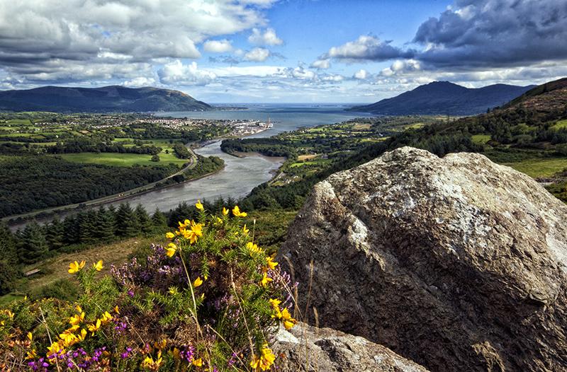 Carlingford Lough on the Táin Way